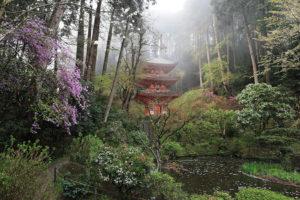 岩船寺/境内 三重塔